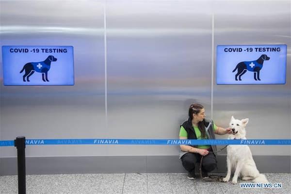 Aeropuerto usa perros para detectar coronavirus en Finlandia