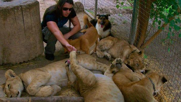 Clausuraron el zoológico de Luján de Buenos Aires | MendoVoz